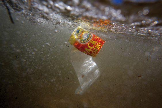 Plástico nadando en el mar