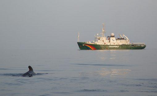Imagen de: Por un futuro  Tratado de los Oceános