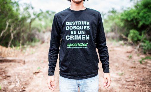 Imagen de: Buenas noticias para los bosques