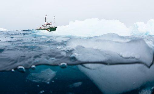 Arctic Sunrise en el océano Antártico