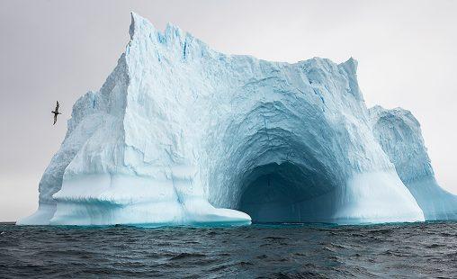 Icebergs de hielo azul, tallados por el viento y el agua