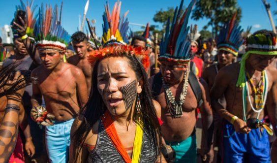 Los pueblos indígenas se enfrentan en Brasil a un Gobierno empeñado en arrebatarles sus derechos. Pero no están solos: el mundo les necesita. Sin ellos, la supervivencia del planeta pendería de un hilo.