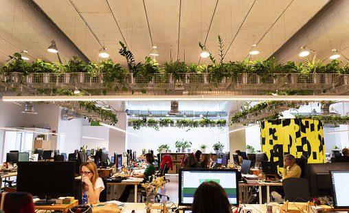 Imagen de: Nueva oficina sostenible