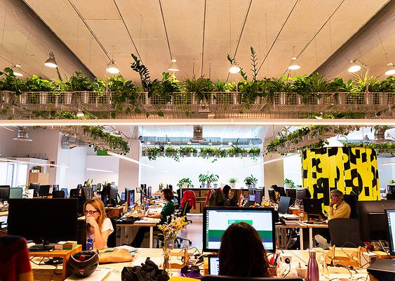 En marzo estrenamos nueva sede: sostenible, respetuosa con el medio ambiente y acorde con el pensamiento de la organización.