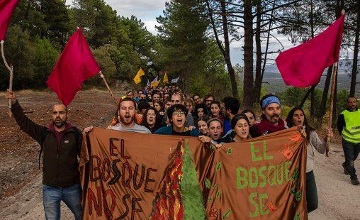 Imagen de: Escuela de activismo