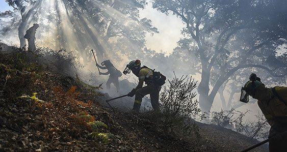 Bomberos Forestales removiendo la tierra tras el incendio